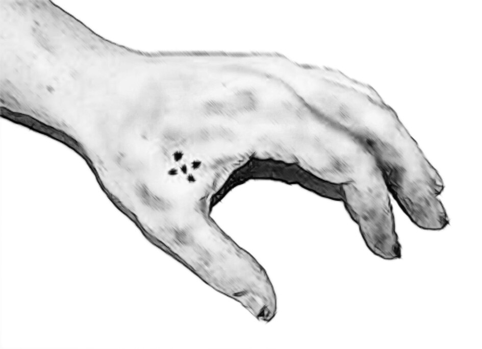 Polizei Hannover: Wer kennt diesen Räuber mit Tattoo?
